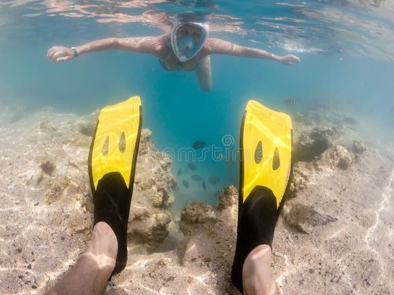 De vrouw snorkelt met school van koraalvissen, Rode Overzees, Egypte stock fotografie