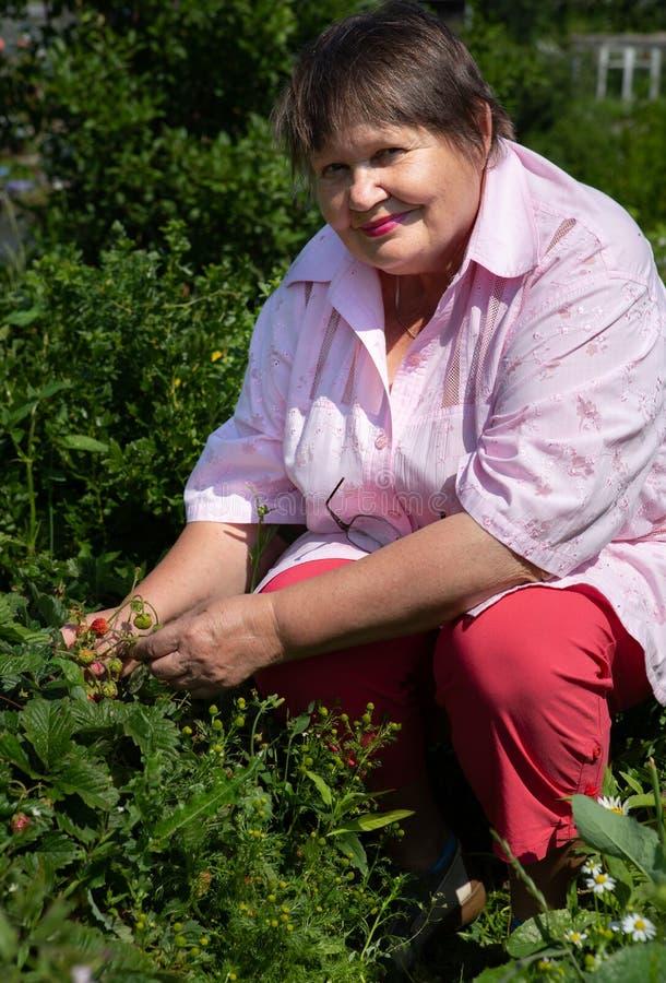 De vrouw toont hoe de aardbei groeit stock fotografie