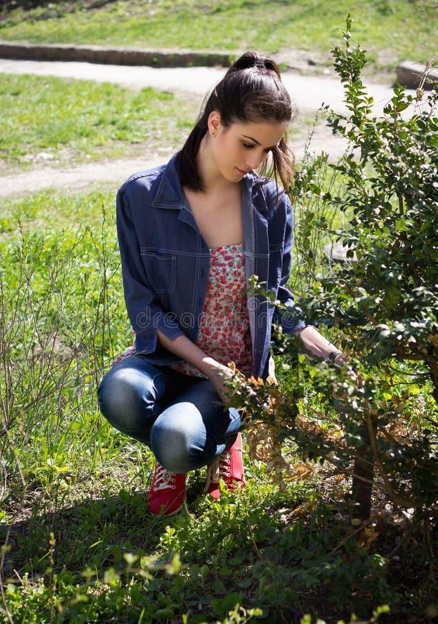 De vrouw in tuin maakt struik schoon stock fotografie
