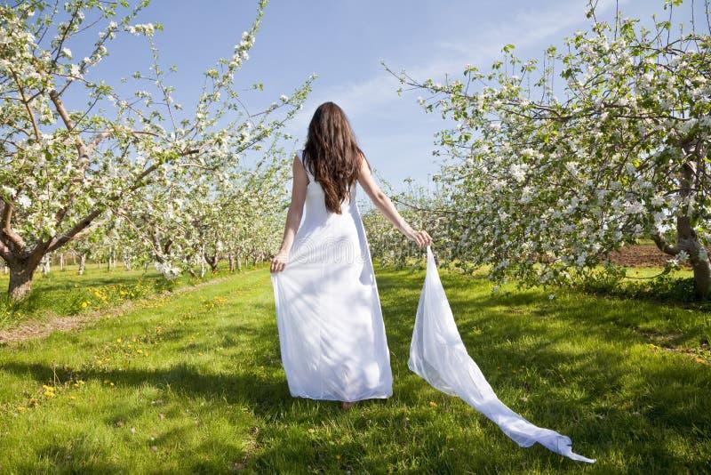 De Vrouw van de Bloesem van de appel royalty-vrije stock afbeeldingen
