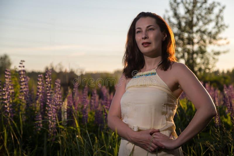 De vrouw van Nice op een gebied van purpere lupines stock foto