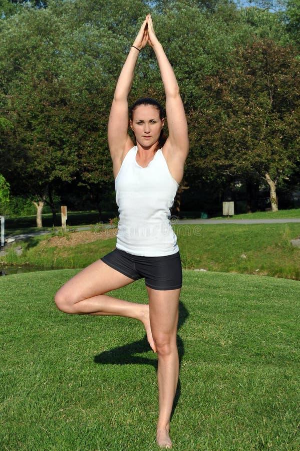 De vrouw in yoga stelt royalty-vrije stock foto's