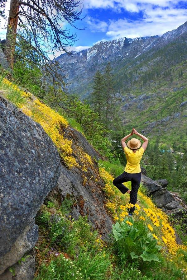 De vrouw in yoga stelt in bergen onder gele wildflowers in de lente stock foto