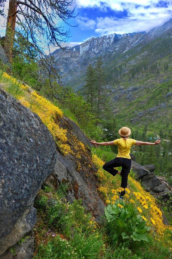 De vrouw in yoga stelt in bergen onder gele wildflowers in de lente royalty-vrije stock afbeelding