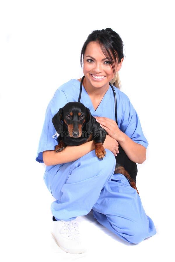 De vrouwelijke Arbeider van de Gezondheidszorg met Hond stock foto's