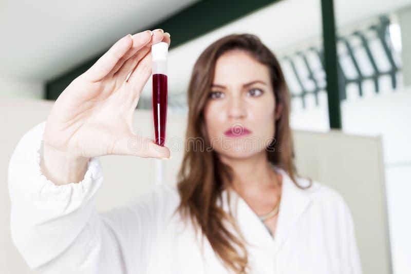 De vrouwelijke arts onderzoekt bloedbuis stock afbeelding