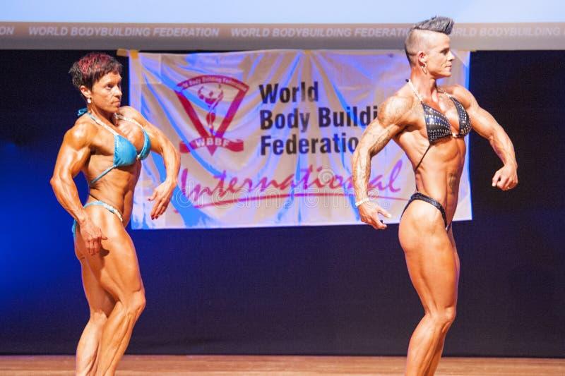 De vrouwelijke bodybuilders buigen hun spieren om hun lichaamsbouw te tonen royalty-vrije stock foto