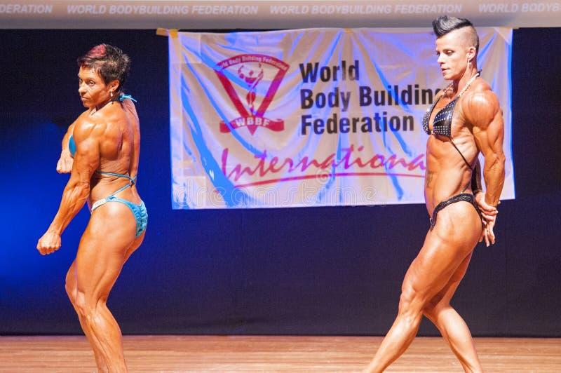 De vrouwelijke bodybuilders buigen hun spieren om hun lichaamsbouw te tonen royalty-vrije stock afbeeldingen