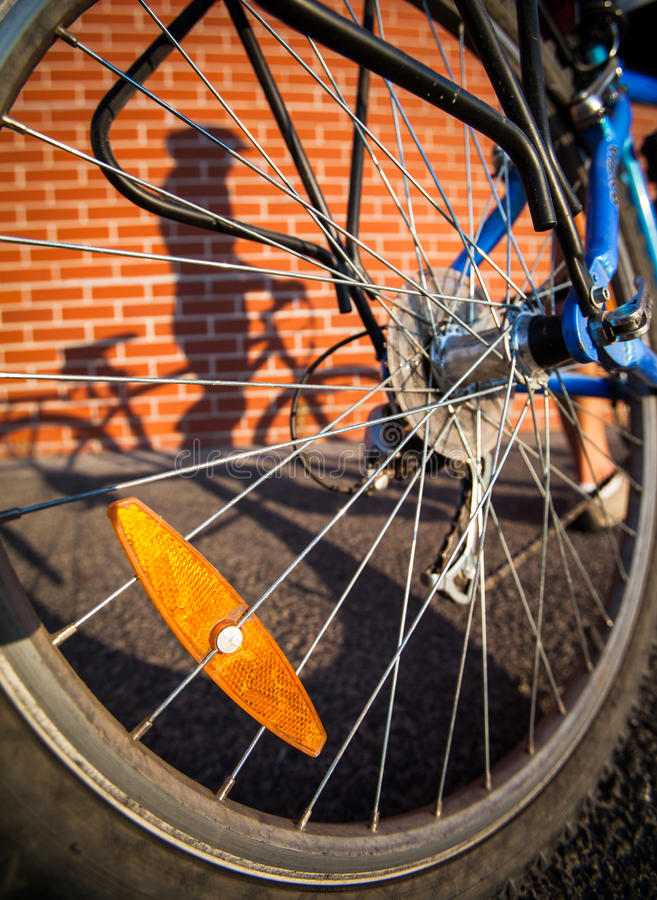 De vrouwelijke fietsers stellen in de schaduw royalty-vrije stock fotografie