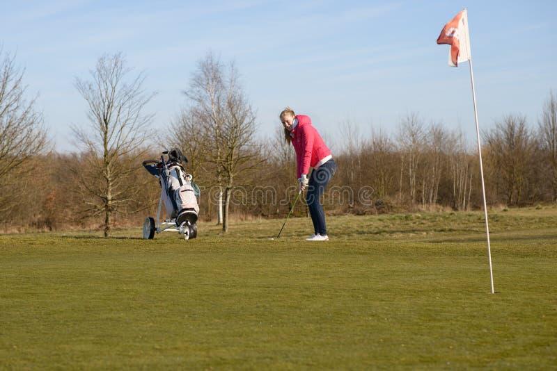 De vrouwelijke Golfbal van de Golfspelerscherf op Kop met Vlag stock foto