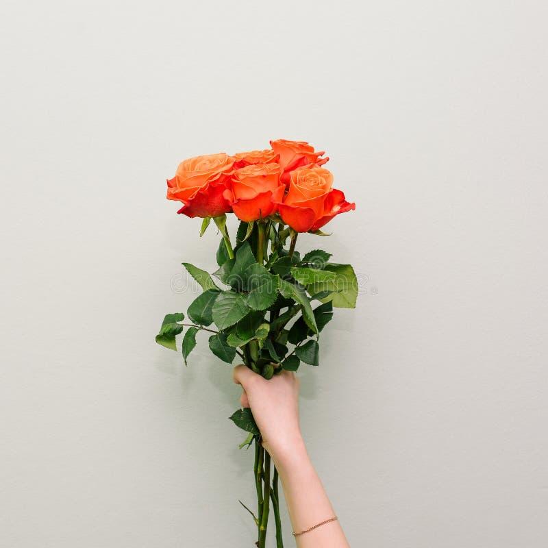 De vrouwelijke hand houdt vijf rozen Lange groene stammen en bladeren Het concept van de vakantiegroet Bloemen als gift Front Vie stock afbeelding
