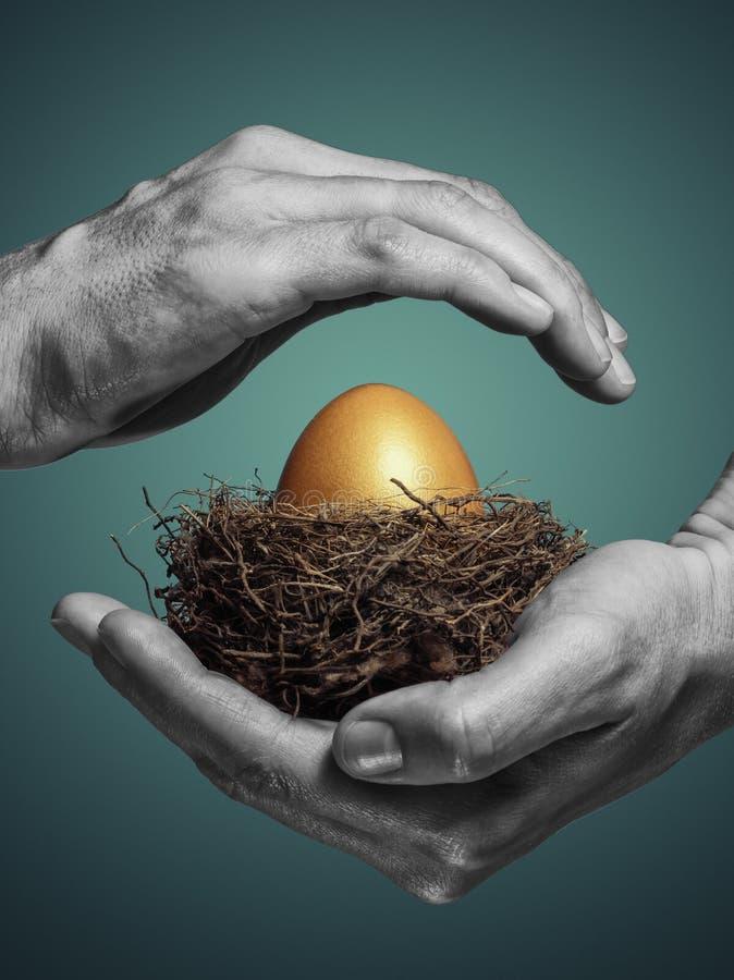 De vrouwelijke handen houden zorgvuldig het nest met een gouden ei stock foto
