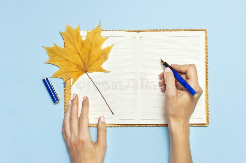 De vrouwelijke handen schrijven in het Open lege notitieboekje met een geel blad van de de herfstesdoorn op blauwe achtergrond de stock afbeelding
