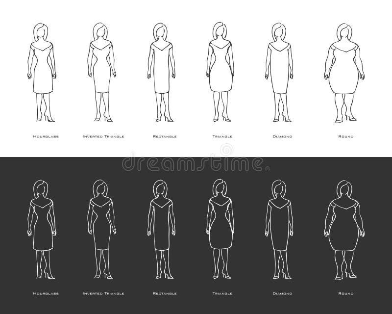 De vrouwelijke lichaamstypes stock illustratie