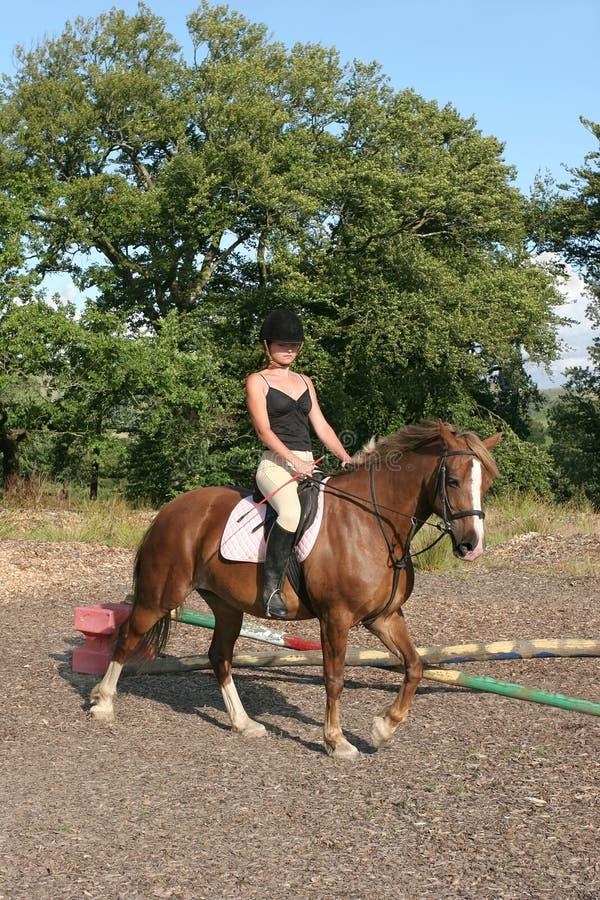 De vrouwelijke Ruiter van het Paard royalty-vrije stock afbeeldingen