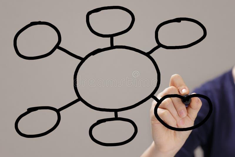 De vrouwelijke tienerhand trekt een grafiek of een plan van cirkels stock foto's