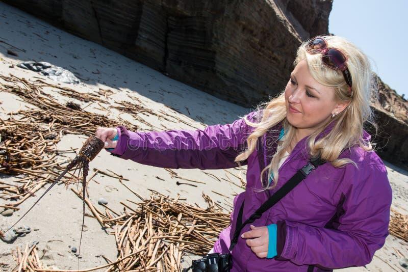 De vrouwelijke toerist vindt het interessante overzeese die leven omhoog op de stranden bij het Nationale Monument van Puntcabril royalty-vrije stock foto