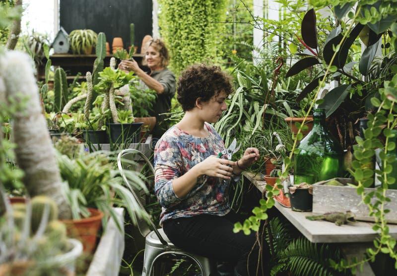 De vrouwen die in een tuin werken winkelen royalty-vrije stock foto
