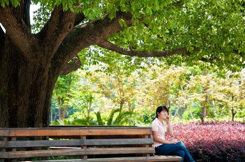 De vrouwen luisteren aan muziek onder de boom stock foto