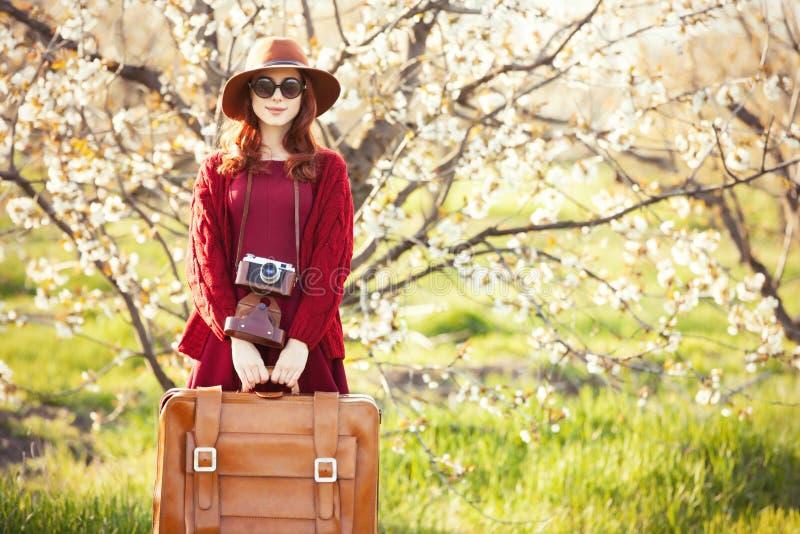 De vrouwen met koffer in de boom van de bloesemappel tuinieren stock foto's