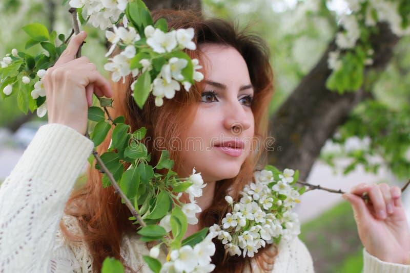 Download De Vrouwen Met Takappel Bloeien Stock Afbeelding - Afbeelding bestaande uit steeg, groen: 107706673