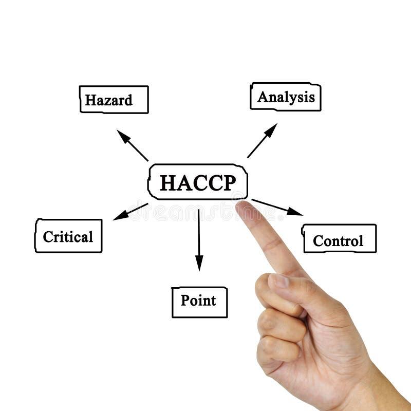 De vrouwen overhandigen het schrijven betekenis van HACCP-concept (Risicoanalyse van royalty-vrije stock afbeeldingen