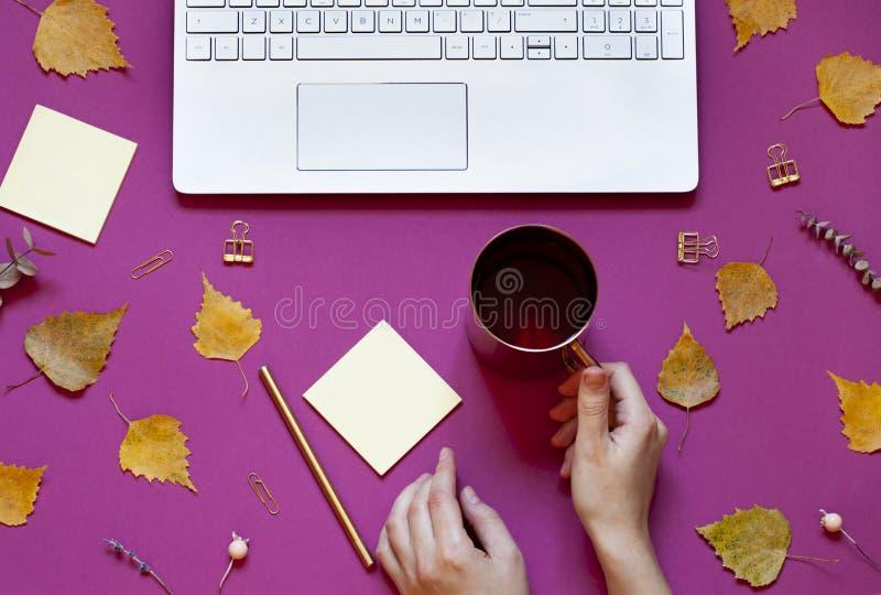De vrouwen` s handen houden een kop thee op de conceptuele de herfstachtergrond Dalings de bedrijfsvlakte legt samenstelling met  royalty-vrije stock foto's