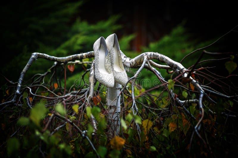 De vrouwenschoenen van het luxehuwelijk met juwelen die op boomtak hangen stock foto