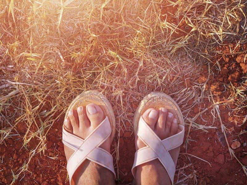 De vrouwenvoeten die met sandals op het zich droge grasgebied en de rode kleigrond bevinden stock fotografie