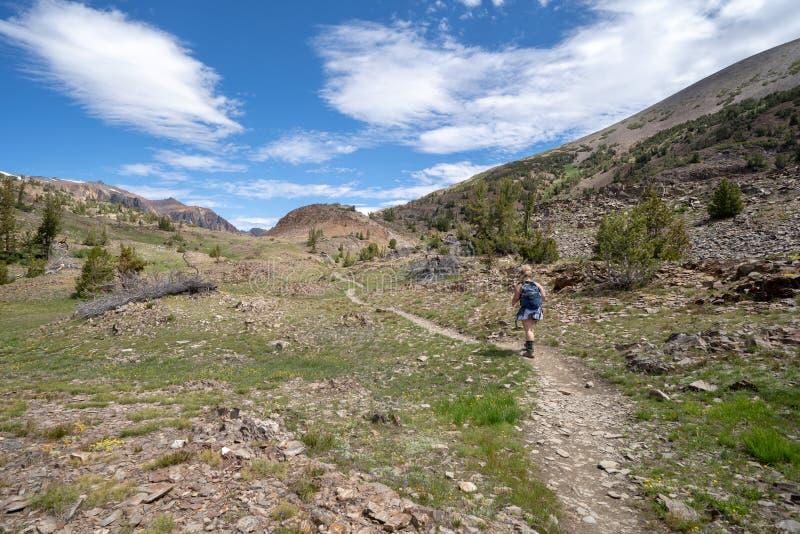 De vrouwenwandelaar loopt langs de vuilsleep in de stijging van het 20 Merenbassin in de Oostelijke Sierra Nevada bergen van Cali stock afbeeldingen