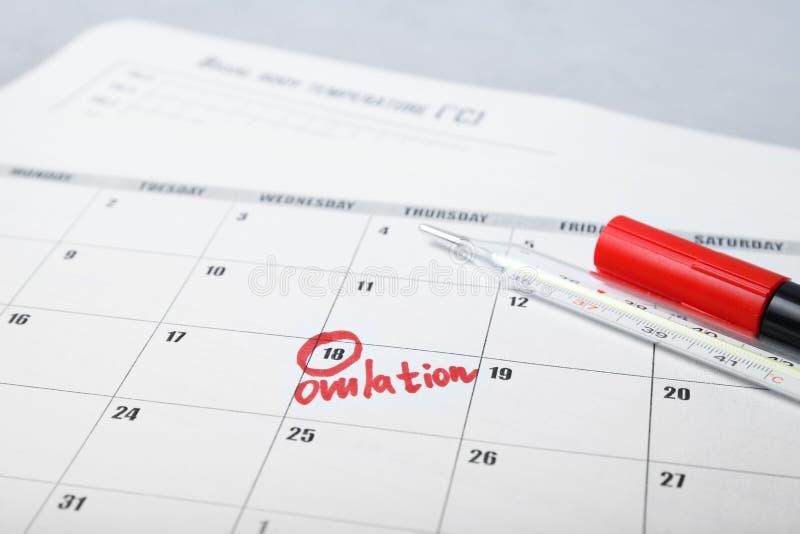 De vruchtbare dagen voor vatten en zwangerschap in kalender op De test van de onvruchtbaarheidscyclus royalty-vrije stock foto