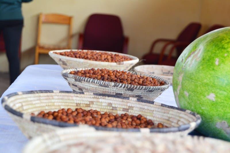 De Vruchten van Botswana Indegenous; Mogwana met Watermeloen stock afbeelding