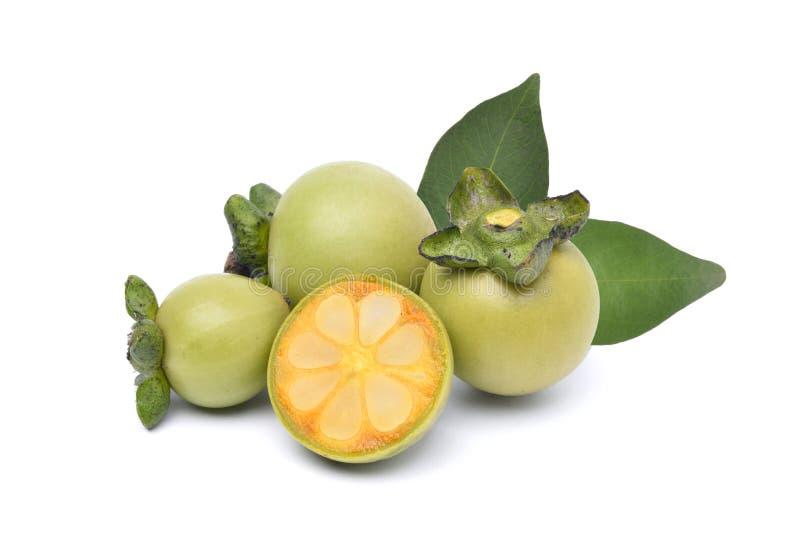De vruchten van Diospyrosmollis royalty-vrije stock afbeeldingen