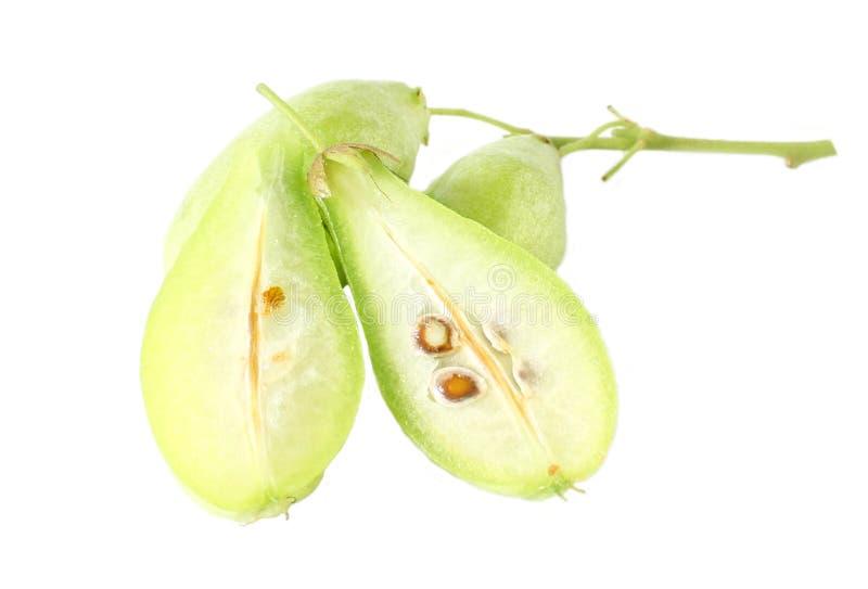 De vruchten van plakbilimbi stock fotografie