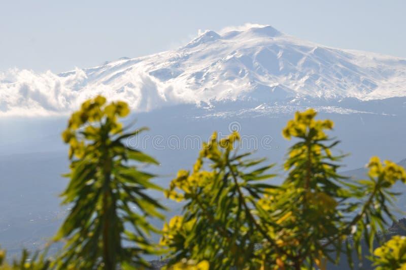 De vulkaan van Etna (Sicilië) royalty-vrije stock fotografie