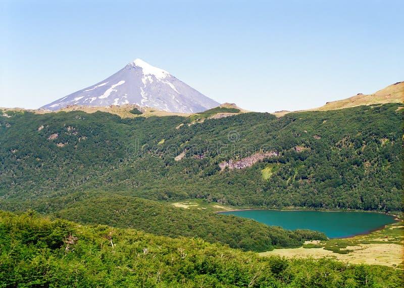 De Vulkaan van Lanin, Chili stock afbeeldingen