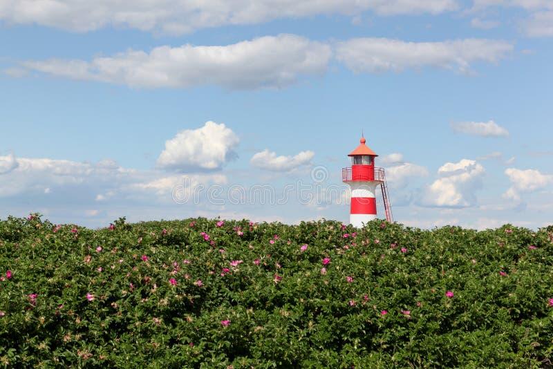 De vuurtoren van Oddesund in Denemarken stock foto's