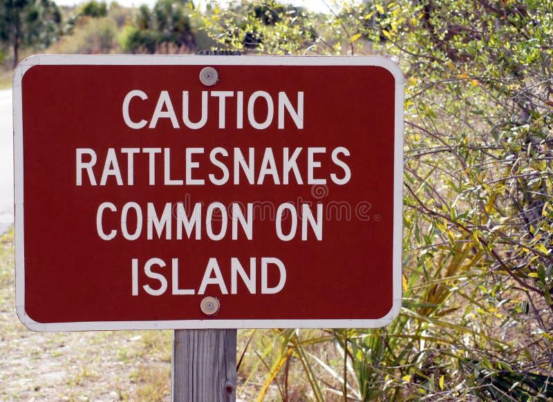 De waarschuwing van de ratelslang stock afbeeldingen