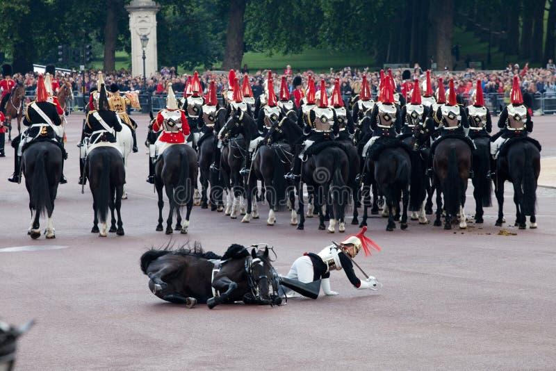 De wachtdaling van het paard stock foto