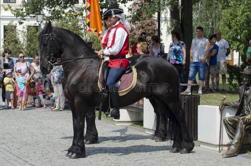 De wachtverandering bij Alba Vesting Iulia stock afbeelding