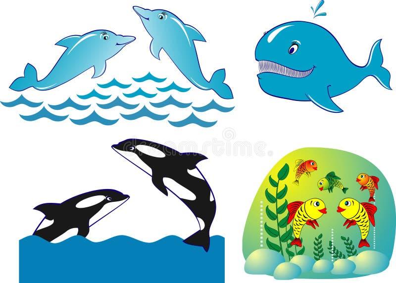 De walvis gouden vissen van de dolfijn vector illustratie