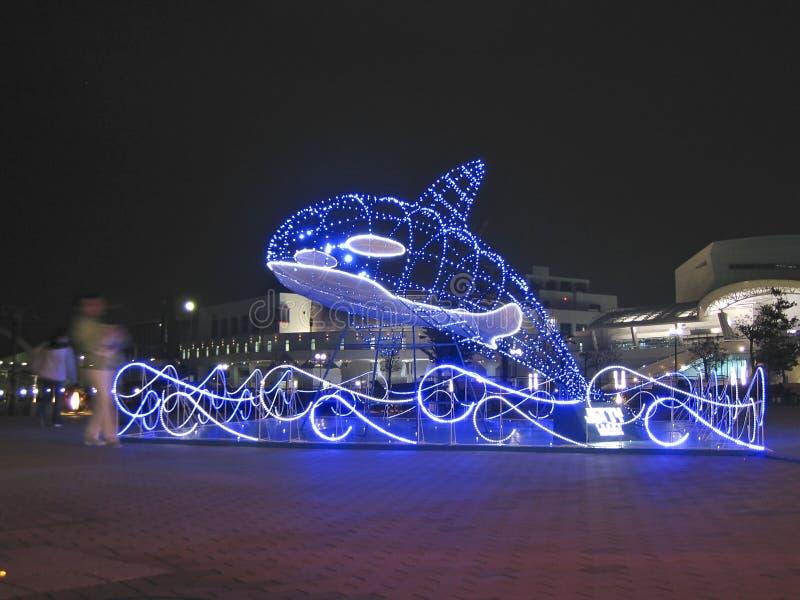 De Walvis van Kerstmis royalty-vrije stock afbeeldingen