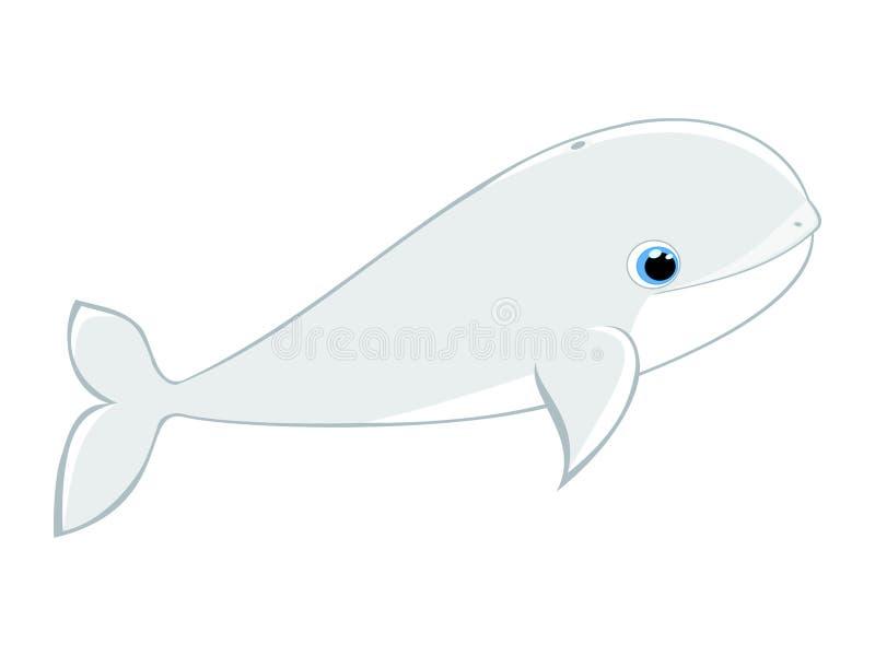 De walvis vectorillustratie van de babybeloega vector illustratie