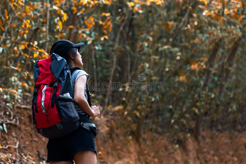 De wandelaar Aziatische jonge vrouwen die van de de herfstaard in nationaal park met rugzak lopen stock afbeelding