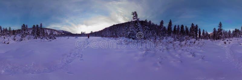 De wandelaar loopt door de sneeuw in een de winterbos bij schemer het gehele uur in de bergen cilindrisch panorama 360 royalty-vrije stock fotografie