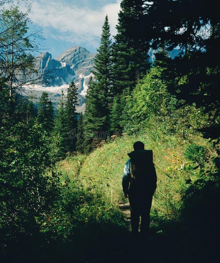 De Wandelaar van de berg royalty-vrije stock foto's