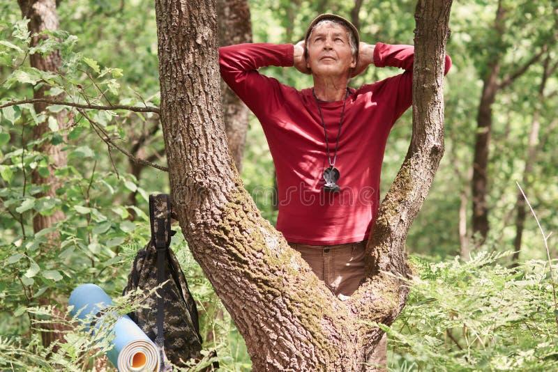 De wandelaarmens die in bos, einden wandelen om rust na lange uren te hebben die, de gezonde persoon van de elderysport met rugza stock afbeeldingen