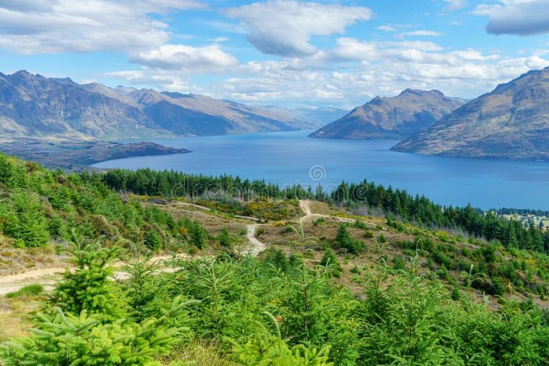 De wandeling van de gang van de queenstownheuvel, meerwaktipu, Nieuw Zeeland 1 royalty-vrije stock fotografie