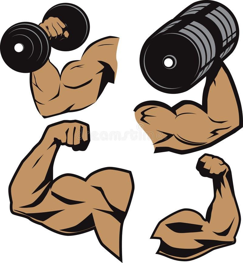 De Wapens van Weightlifter royalty-vrije illustratie
