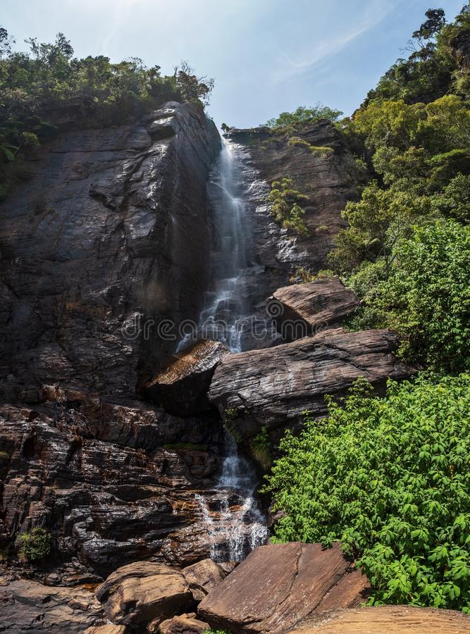 De Warefallminnaars springen in het bos in Nuwara Eliya, beroemd in Sri Lanka royalty-vrije stock afbeelding